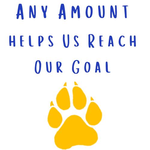 Direct Donation Any Amount